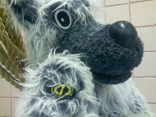 dc-mascot