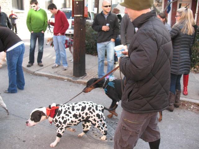 reindog parade 008