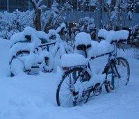 snowmegeddan
