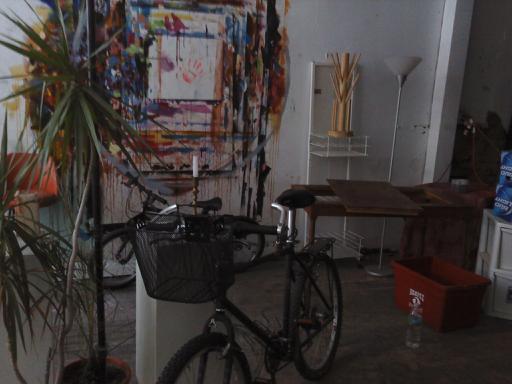 susans bike