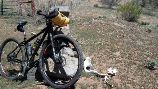 bike bones