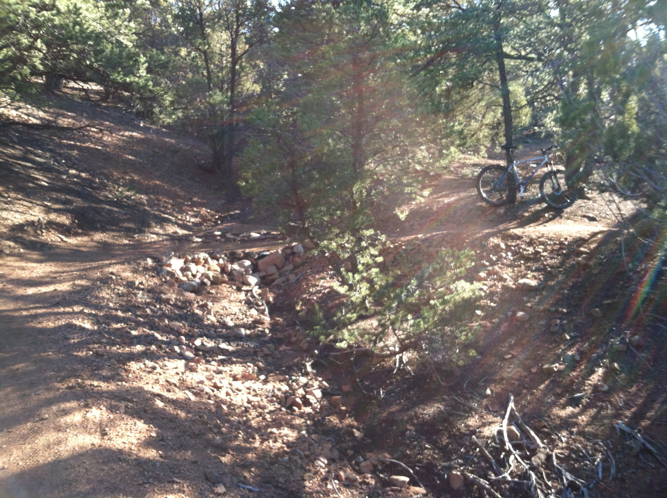 This here's the Dale Ball trail in Santa Fe. It was fun, rolly, and fast. Not real technical, but goddamn fun.