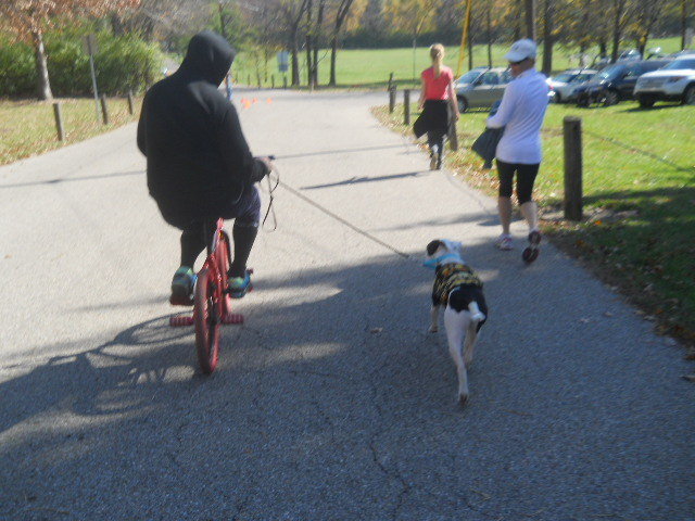 Lola's first bike race