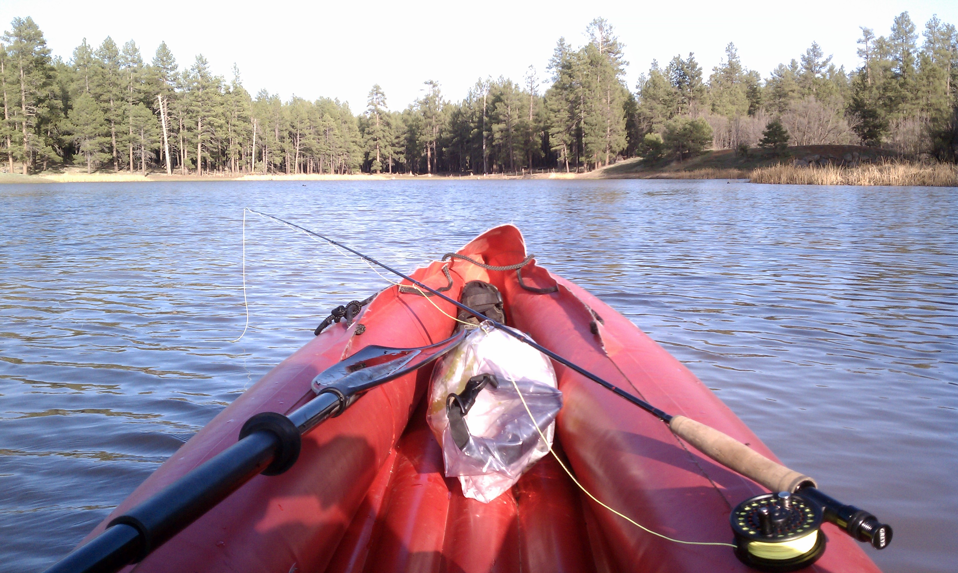 on a borrowed kayak, catching a buzz