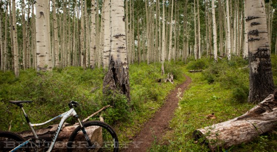 This trail rides well with beer on your breath.