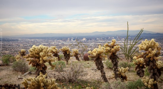 A view of Phoenix from South Mountain.