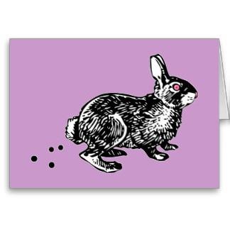 easter_bunny_poo_card-r7bf0ff939a484ce7ba75dfe5e9ce6284_xvuak_8byvr_324