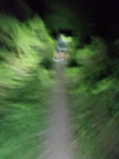the stupid trail wouldn't stay still